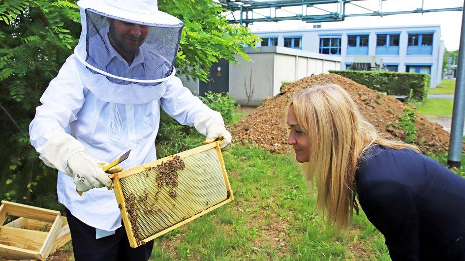 Standortleiterin Kerstin Oberhaus freut sich schon auf den ersten Honig aus dem Industriepark.